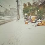 Nikon D600+Tamron 90mm F2.5 macro (52B)+Instagram